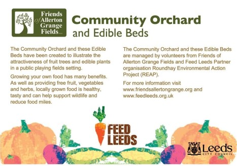 Community Orchard and Edible Bed